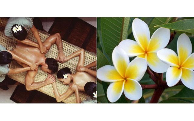 Ubud Spa - 3 Point Spa : Four Hands Massage